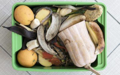Les déchets alimentaires : une urgence collective