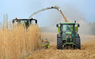 Biocarburants: quelles sont les alternatives disponibles?
